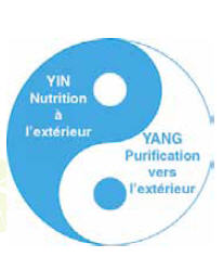 Yinnutritionyangpurificationfr