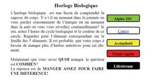 Textecycle_biorythmique