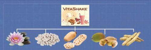 Vitashake3